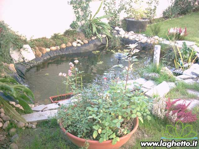 Sito per gli appassionati di laghetti pesci - Laghetto per giardino ...